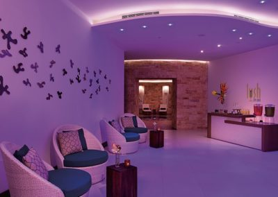 breathless-riviera-cancun_spa_lushbar_1